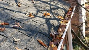 Leaves in gutter system