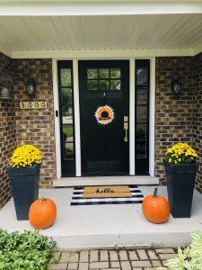 New Provia Entry Door